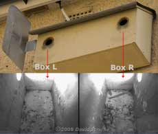 Starling boxes and cctv images